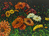 Floral Interpretation - Gerber Daisies